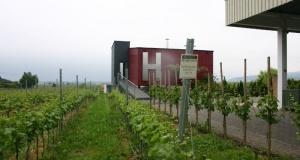 WeingutHorcher