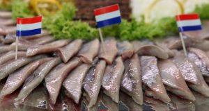 Hollaendisches Fischbuero Matjes Flaggen Aussand