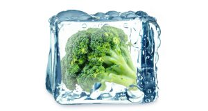 broccoli in the ice cube