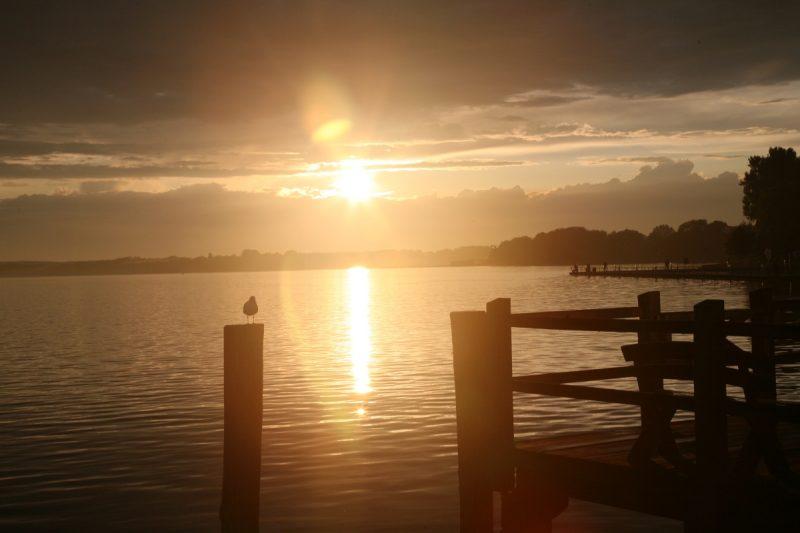 Müritz Sonnenuntergang