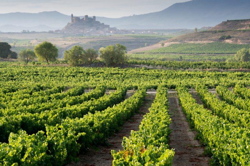 Weinspezialitäten aus Spanien