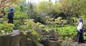 IGA_Garten