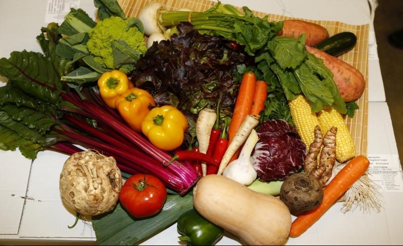 GemüseTitelbild