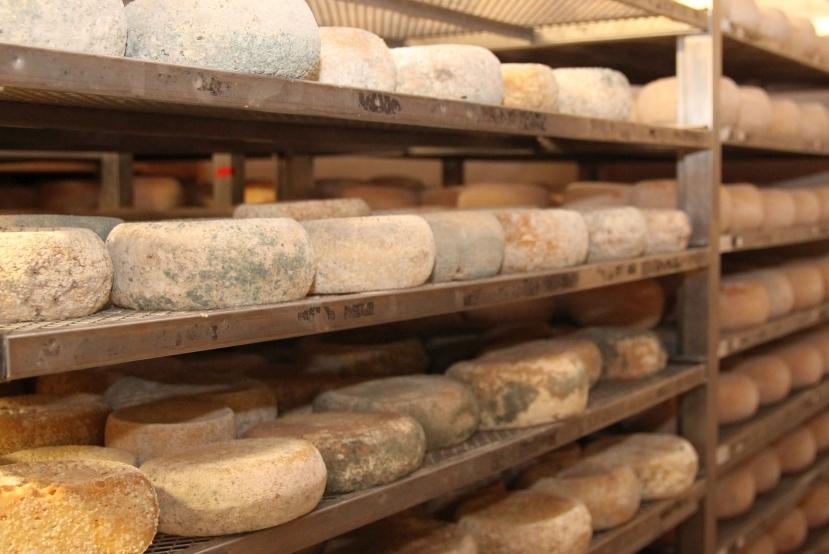Italien Käse